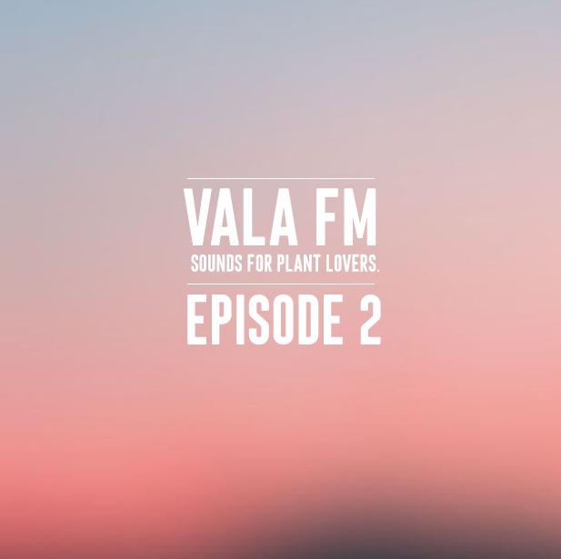 VALA FM 2