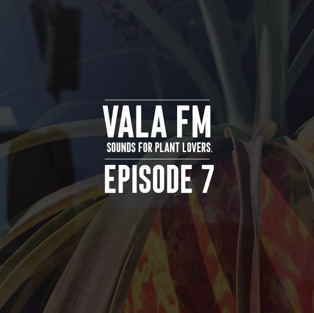 VALA EPS 7 ART