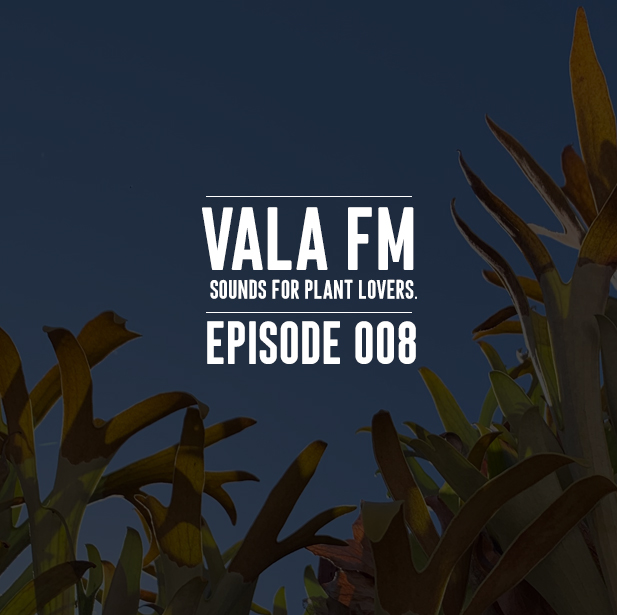 VALA FM EPS 8 ART