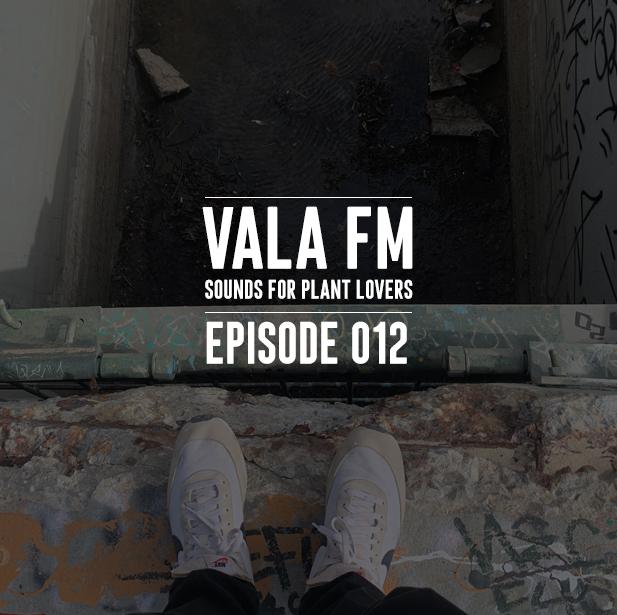VALA FM 12 ART