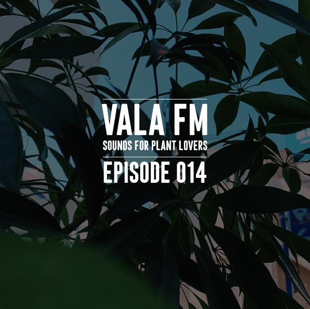 VALA FM EPS 14